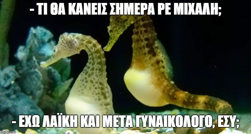 popxca