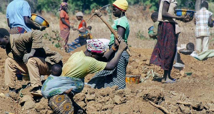 1 environmental destruction modern slavery