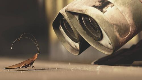 Τι συμβαίνει κάθε καλοκαίρι και φρικάρουμε ΤΟΣΟ με τις κατσαρίδες;