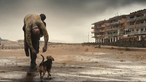 Η πρότασή μας για σινεμαδάκι: «Dogman»