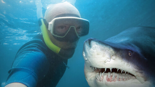 Ήξερες ότι οι selfies προκαλούν περισσότερους θανάτους από ότι οι καρχαρίες;