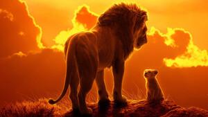 Ο σύγχρονος «Βασιλιάς των Λιονταριών» δημιουργεί μεγάλες προσδοκίες